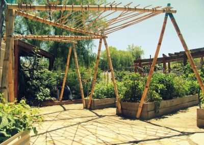 Bamboo Shade Structure